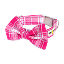 Clasp Collar with Bow Tie [Tartan Candy]