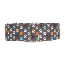Martingale Collar [Paw Prints]
