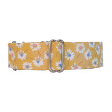 Martingale Collar [Isabelle]