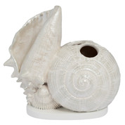 Seaside Seashells Toothbrush Holder from Creative Bath