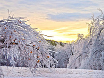 Sunrise Ice Storm