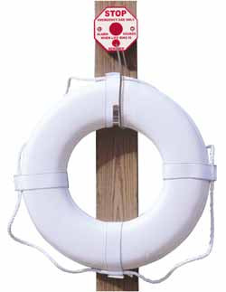 Life ring theft stopper
