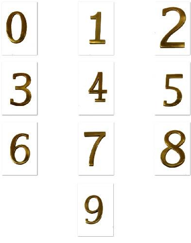 BRASS Accents Door Address Plaque Raised Numerals