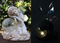 Fairy Solar Light with Crackle Glass Solar Globe and Soft White LED Bulbs.