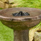 Solar powered fountain also includes a 360 degree umbrella spray head for a refined waterfall sound.