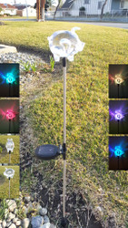 These color changing solar lights stand 32.25 inches High, and the Pig is solid acrylic.