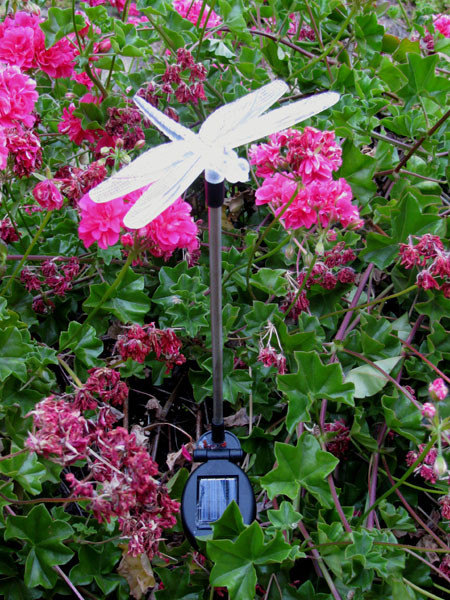 Color changing solar lights have a lucky Dragonfly on top that changes through variations of red, blue and green colors at night.