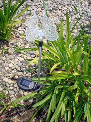 Butterfly color changing solar lights are clear acrylic, with stainless steel poles.
