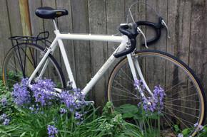 Early 1980's Klein Stage Custom Touring PRISTINE Show Bike: Huret DuoPar, Phil Wood, Modolo, Specialized, Avocet, Original Paint 49cm (c-c)