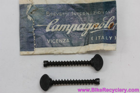 NIB/NOS Campagnolo Long Dropout Screws: #302 - Black (pair)