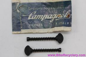 NIB/NOS Campagnolo Long Dropout Screws: #302 - Black (pair)