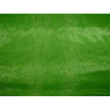 Sheer Mirror Organza - Apple Green