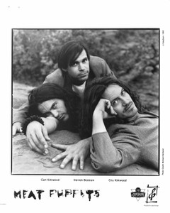 "MEAT PUPPETS 8""x10"" b&w Glossy Press Photo Too High to Die 1994 MINT"