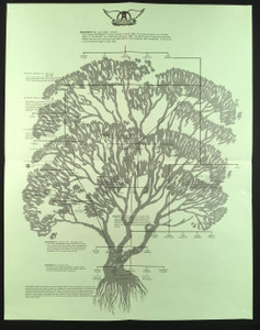 "AEROSMITH ORIGINAL Done with Mirrors 1985 17"" x 22"" Family Tree Poster + RARE"