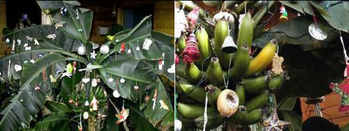 christmas-banana-tree.jpg