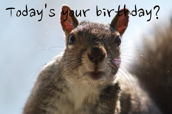 cute-funny-birthday-images-pictures.jpg