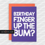 BIRTHDAY FINGER UP THE BUM? | Rude Birthday Cards