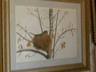 Robin In Nest Original Pastel Drawing by the Porter Family