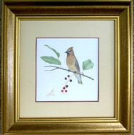 Cedar Waxwing Original Pastel Drawing by the Porter Family