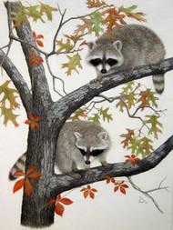 Porter Family Original Pastel Drawing 2 Raccoons in Tree