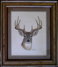 Framed Original Pastel Drawing Whitetail Deer