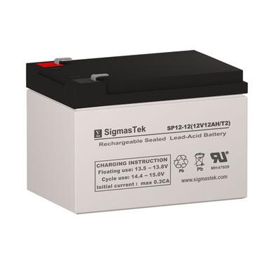 Haze Batteries HZS12-12 Replacement Battery