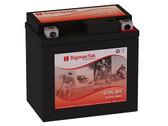 Kawasaki 90CC KFX90, 2007-2010 Battery (Replacement)