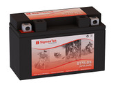 Yamaha 250CC TTR250, 1999-2006 Battery  (Replacement)