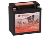 GS Battery GTX14-BS Battery (Replacement)