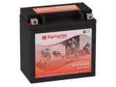 BMW 1200CC R1200RT, 2014-2016 Replacement Battery