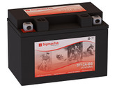 Suzuki 1250CC GSX1250S, A Bandit, FA, 2007-2016  Replacement Battery