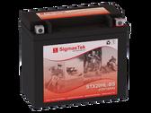 BRP (SKI-DOO) Renegade,GSX,MX Z, 1200CC, 2009-2018 Replacement Snowmobile Battery