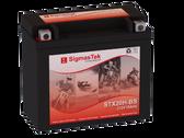 Duralast GTX20H-BS FP Replacement Battery