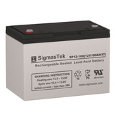 Bright Way Group HX12-110 Replacement 12V 100AH SLA Battery