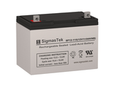 Bright Way Group BW 121100 Z (Group 30H) Replacement Battery