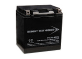 Bright Way Group YTX30L-BS (FA) Battery
