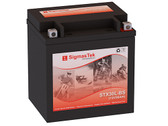 Polaris 600CC Wide Track, 2010-2012 Battery (Replacement)
