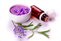 Pure Lavender Essential Oil by Mudfarm Organix Botanicals