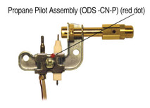 ODS Standard - CN-P
