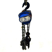 AMH All Material Handling 8 Foot Lift Manual Hand Fall Chain Hoist 3 Ton 6000#