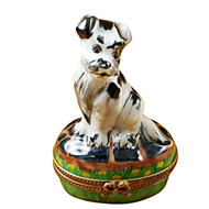 Limoges Imports Black/White Tramp Dog Limoges Box
