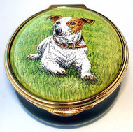 Staffordshire Jack Russell