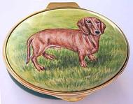 Staffordshire Dachshund