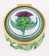Staffordshire Thistle (07-974)