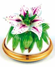 Staffordshire Lily B/B