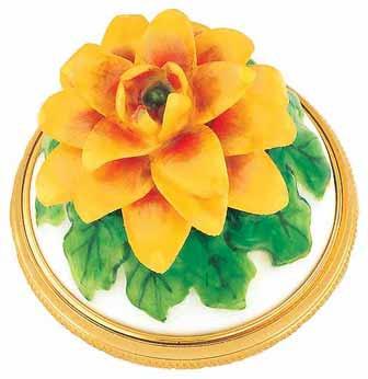Staffordshire Chrysanthemum B/B