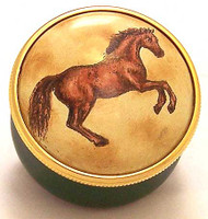 Staffordshire Stallion