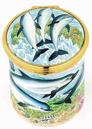 Staffordshire Dolphins (31-151)