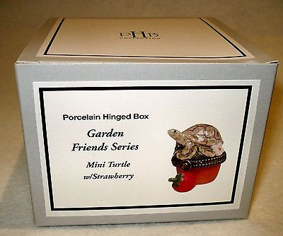 Mini Turtle with Strawberry PHB