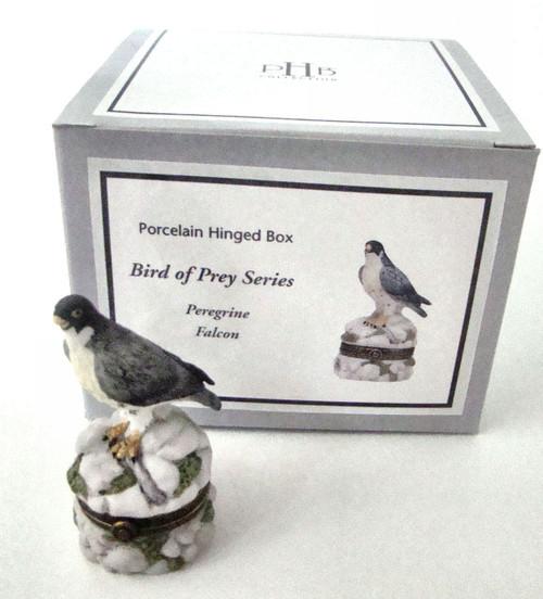 Birds of Prey Peregrine Falcon PHB